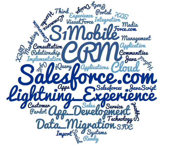 webider_SFDC_Services_wordcloud